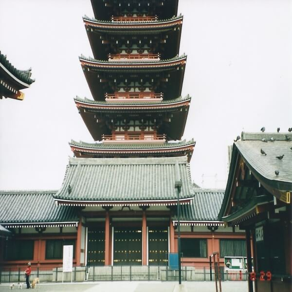 Tracy Taylor standing in front of Ninnaji Temple, Japan